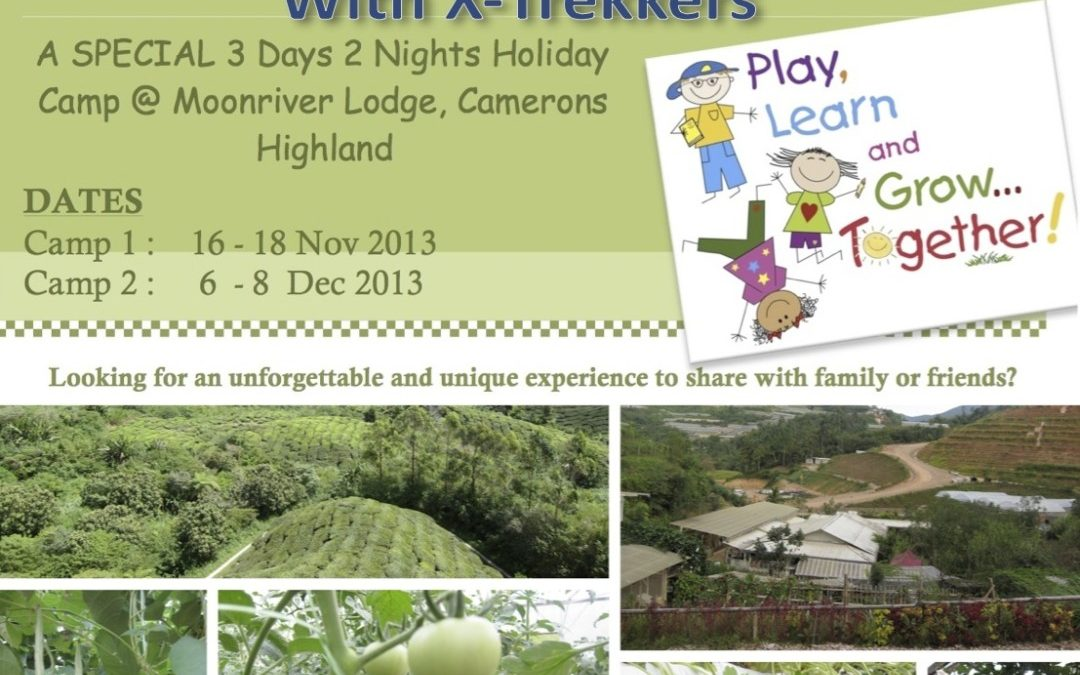Year-End Holiday Camp