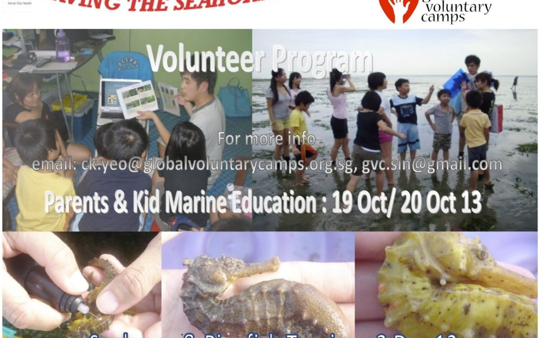 1 Day Save The Seahorse