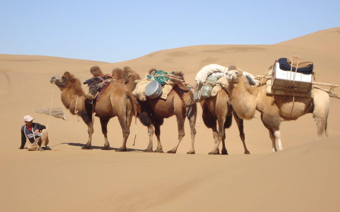 13 Days Xinjiang Desert Trek (Karakol and Taklamakan trek)