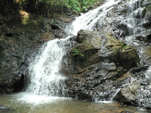 Pelapah Waterfalls
