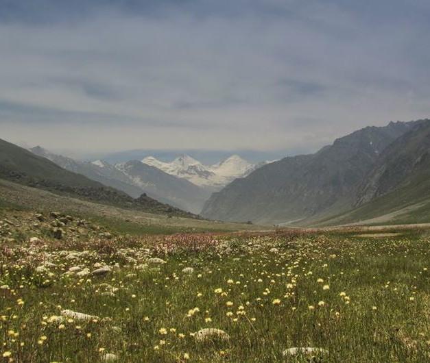 Miyar Valley-7 Valley of Flowers