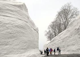 Snowwall Yamagata