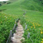 Rebun Island trail hike
