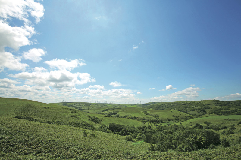 Soya Hills