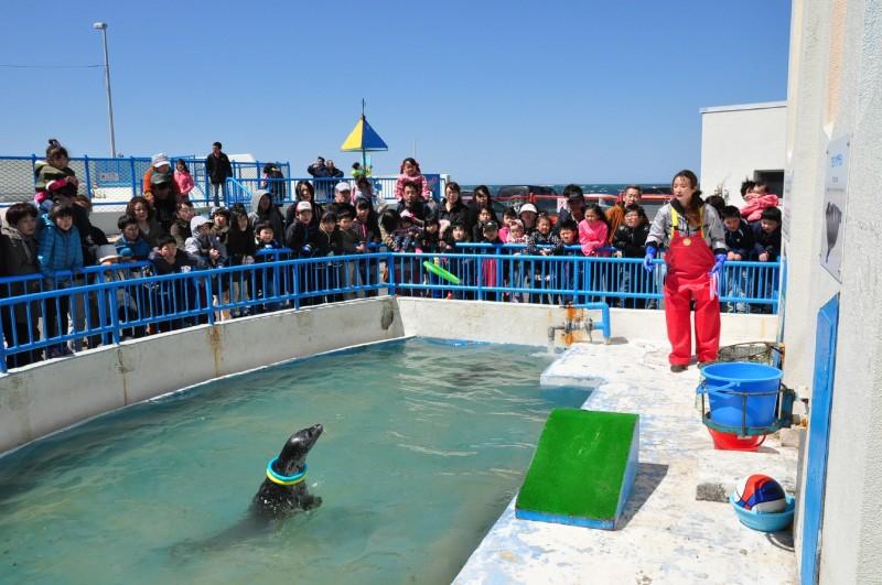 Wakkanai City Noshappu Aquarium-2