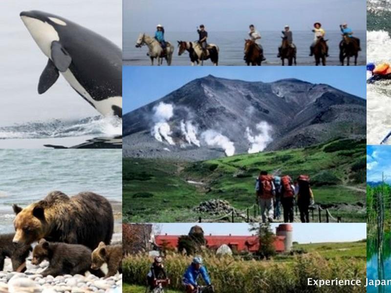 Hokkaido Adventures