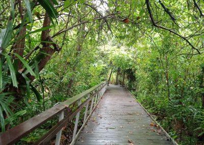 Berlayer Creek